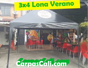 CARPA IMPERMEABLE DE 4X4 LONA VERANO