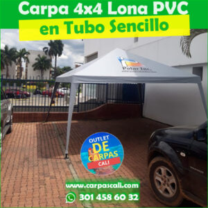 Carpa Toldo Parasol Lona Verano PVC 4×4 Mts